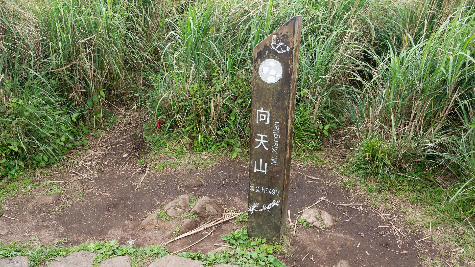 taipei-mountaineering-section-1